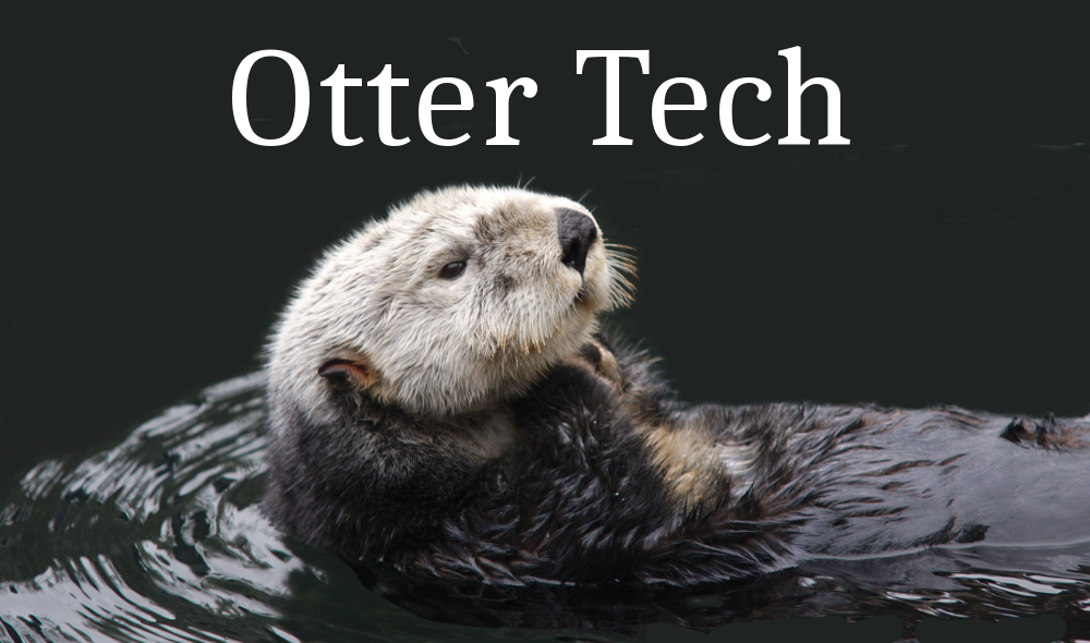 Otter Tech Consulting Logo