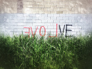 Spray paint of the word evolve, showing backwards 'love' in red.
